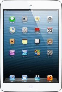 Reparatur beim defekten Apple iPad 5 Tablet